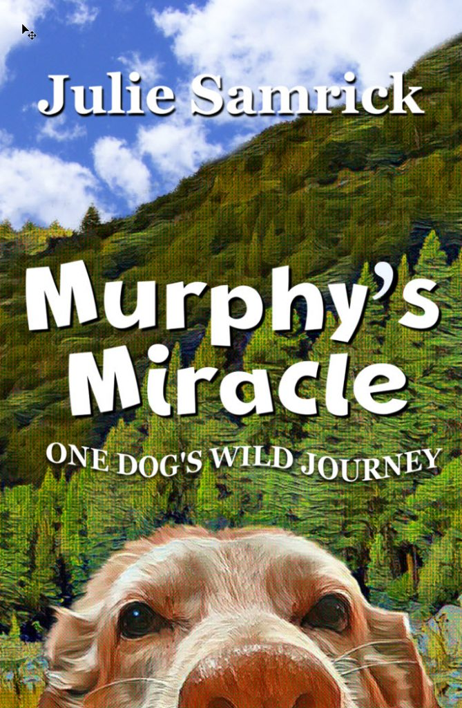 Book Cover: Murphy's Miracle - One Dog's Wild Journey
